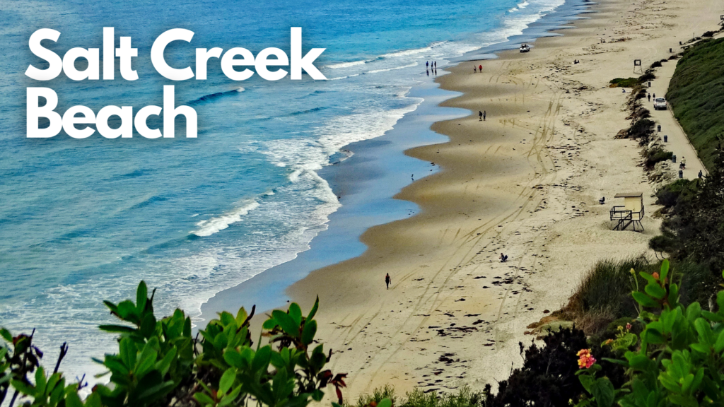 monarch beach/ salt creek beach/ dana point harbor loop