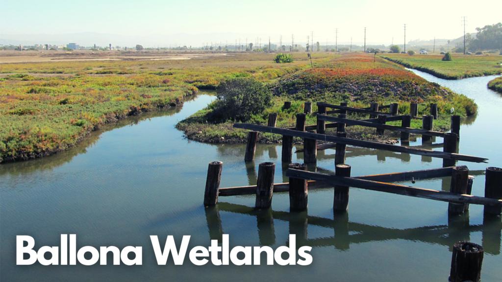 Ballona Wetlands Ecological Reserve, Playa Del Rey, California