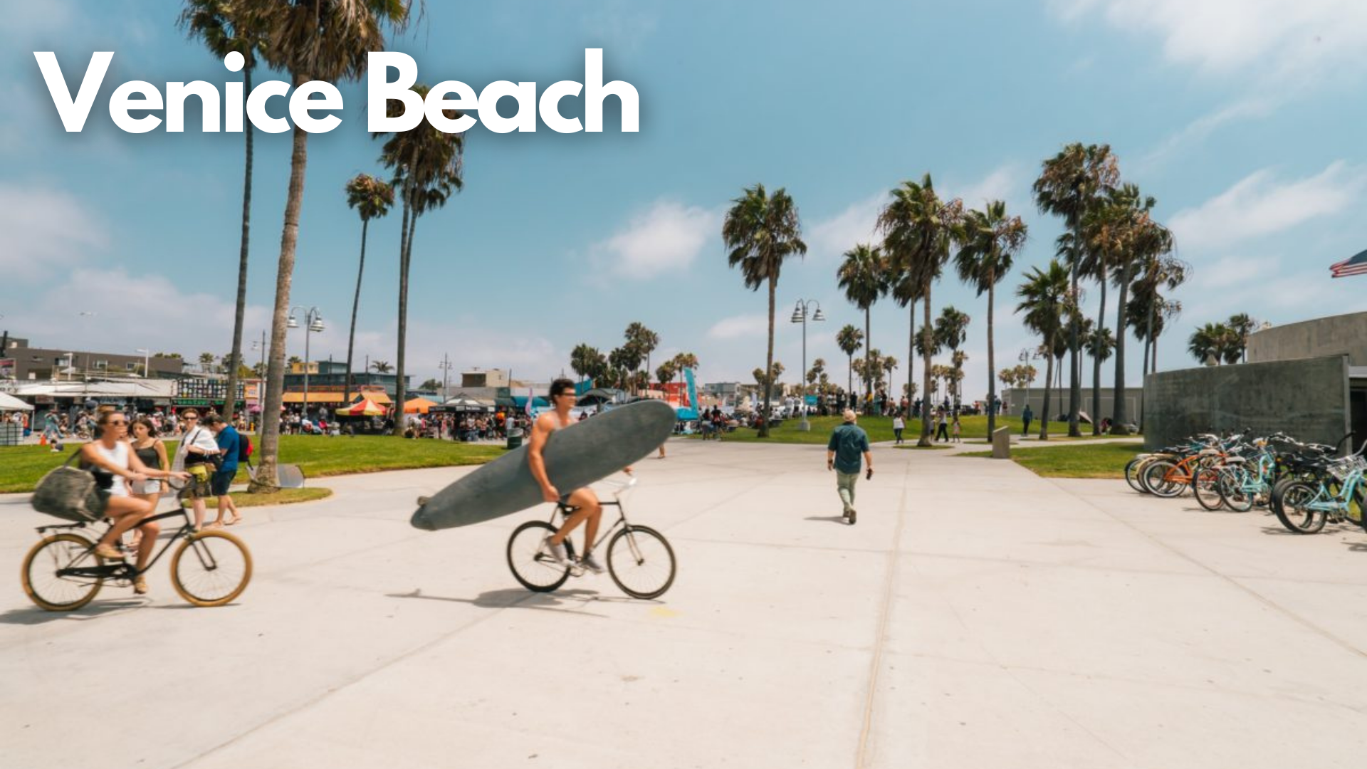 venice beach, california, lots of palm trees, blue sky, multiple bikers, 2 bikers with surfboards in arms crossing bike path