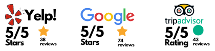 synaptic cycles online ratings